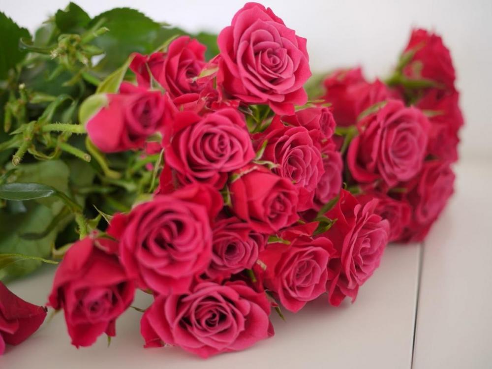 5a0953aea9a26_ramo-rosas-cumpleaos.thumb.jpg.a062d381a940b099488859138ff5c095.jpg