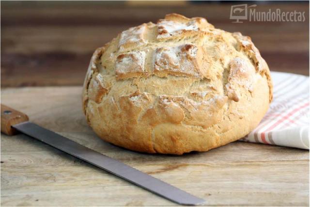Pan rápido – TM5