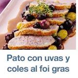 filetes-pato